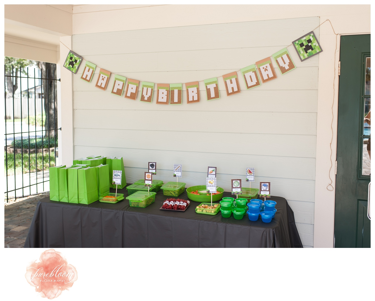 Minecraft Birthday Party ideas. Pure Bloom Photography